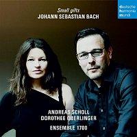 Dorothee Oberlinger, Johann Sebastian Bach, Ensemble 1700 – Bach - Small Gifts