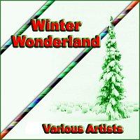 Různí interpreti – Winter Wonderland