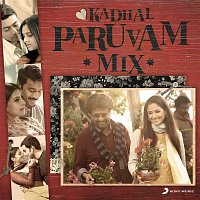Various Artists.. – Kadhal Paruvam Mix