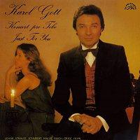 Karel Gott – Koncert pro tebe