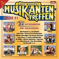 Různí interpreti – Das Grosse Musikantentreffen Folge 21