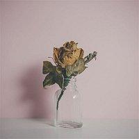 Fyfe – Belong (feat. Kimbra) [Batuk Remix]