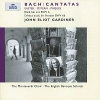 Michael Chance, Bernarda Fink, Mark Padmore, Steve Davislim, Dietrich Henschel – Bach, J.S.: Easter Cantatas BWV 6 & 66