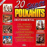 Různí interpreti – 20 Super Polkahits - Folge 5 - Instrumental