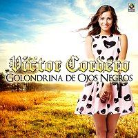 Victor Cordero – Golondrina de Ojos Negros