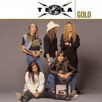 TESLA – Gold