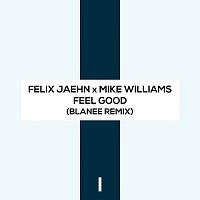 Felix Jaehn, Mike Williams – Feel Good [Blanee Remix]