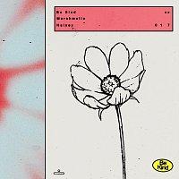 Marshmello, Halsey – Be Kind