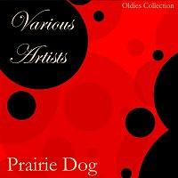 Různí interpreti – Prairie Dog