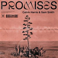 Calvin Harris, Sam Smith – Promises