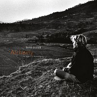 David Sylvian – Alchemy: An Index Of Possibilities [Remastered 2003]