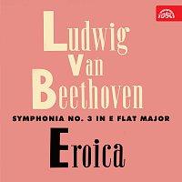 Pražský komorní orchestr – Beethoven: Symfonie č. 3 Eroica, Stvoření Prométhea