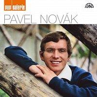 Pavel Novák – Pop galerie