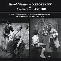 Různí interpreti – Pinter: Narozeniny - Voltaire: Candide