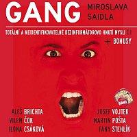 Gang Miroslava Saidla – Totální a neidentifikovatelné dezinformátorovo hnutí mysli č.1
