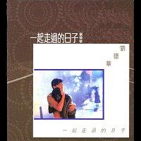 Andy Lau – Yi Qi Zou Guo De Ri Zi
