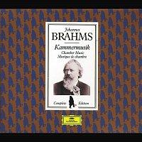LaSalle Quartet, Amadeus Quartet – Brahms Edition: Chamber Music