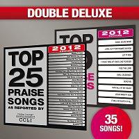 Různí interpreti – Top 25 Praise Songs/Top 10 Praise Songs [Double Deluxe 2012 Edition]