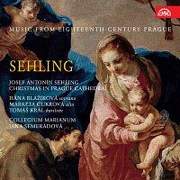 Collegium Marianum – Sehling: Vánoce v pražské katedrále. Hudba Prahy 18. století
