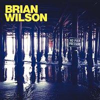 Brian Wilson – No Pier Pressure