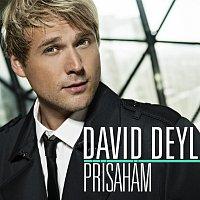 Deyl David – Přísahám