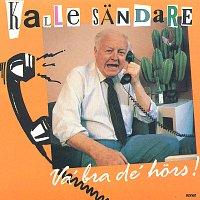 Kalle Sandare – Va´ bra de´ hors!