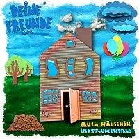 Deine Freunde – Ausm Hauschen Instrumentals