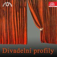 Přední strana obalu CD Divadelní profily (historický archiv)