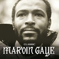 Marvin Gaye – The Masters Collection [Spectrum]