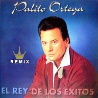 Palito Ortega – El Rey de los Éxitos (Remix)