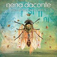 Nena Daconte – Una Mosca En El Cristal