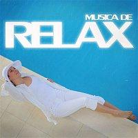 Audi – Musica de Relax