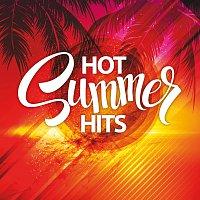 Různí interpreti – Hot Summer Hits 2016