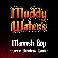 Muddy Waters – Mannish Boy (Ruckus Roboticus Remix)