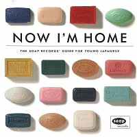 Různí interpreti – Now I'm Home - The Soap Records Guide