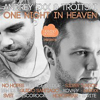 One Night in Heaven, Vol. 11 - Mixed & Compiled by Andrey Exx & Troitski