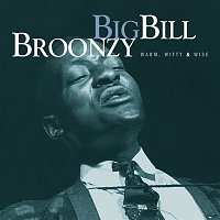 Big Bill Broonzy – Warm, Witty, & Wise (Mojo Workin': Blues For The Next Generation)