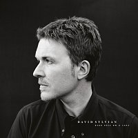 David Sylvian – Dead Bees On A Cake [Deluxe Edition]