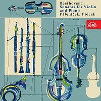 Josef Páleníček, Alexander Plocek – Beethoven: Sonáty pro housle a klavír