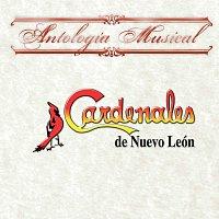 Cardenales De Nuevo León – Antología Musical