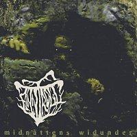Finntroll – Midnattens Widunder