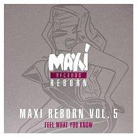 Big Muff – Maxi Reborn Vol. 5: Feel What You Know