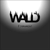 Přední strana obalu CD Firmament