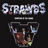 Přední strana obalu CD Bursting At The Seam