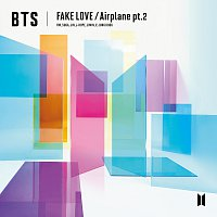 BTS – FAKE LOVE / Airplane pt.2