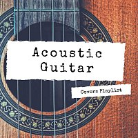 Daniel Flowers, Arlo Vega, Lucas Silver, Aleko Nunez – Acoustic Guitar Covers Playlist