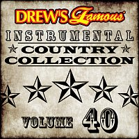 The Hit Crew – Drew's Famous Instrumental Country Collection [Vol. 40]