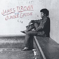 James Brown – In The Jungle Groove