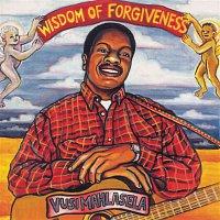 Vusi Mahlasela – Wisdom Of Forgiveness
