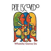 Pete Escovedo – Whatcha Gonna Do